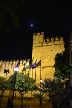 Alcázar de los Reyes Cristianos - and the moon.