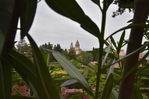 13_Alhambra_Generalife4